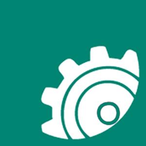GooglePlus Icon300